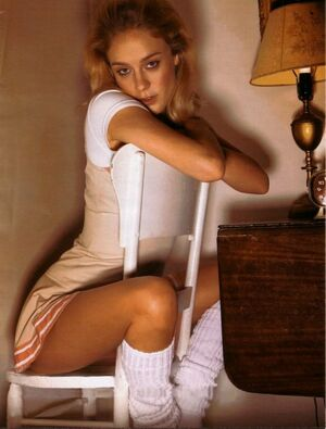 chloe sevigny the brown bunny